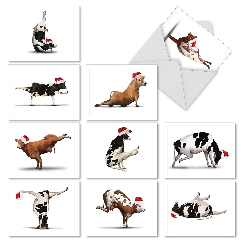 Amazon Holiday Bovine Nirvana Christmas Cards Boxed Set Of