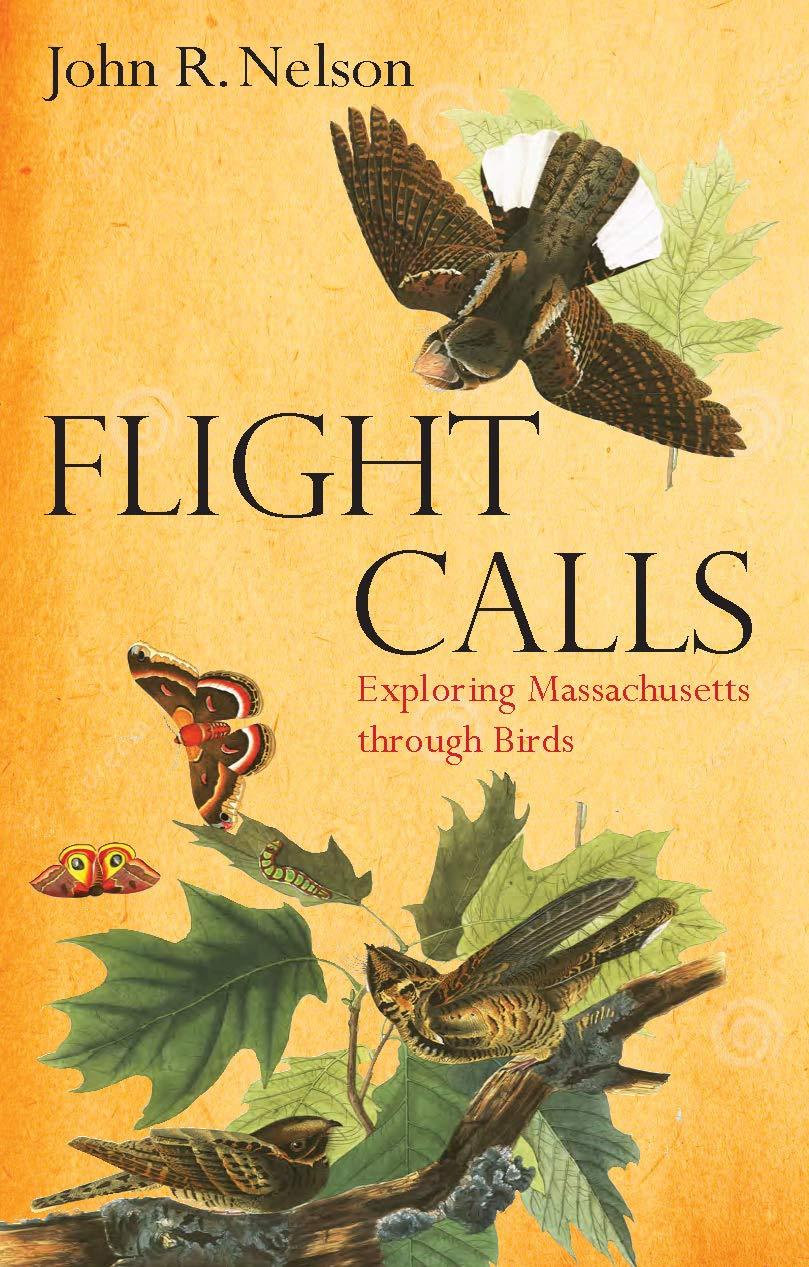 Flight Calls: Exploring Massachusetts through Birds: Nelson, John ...