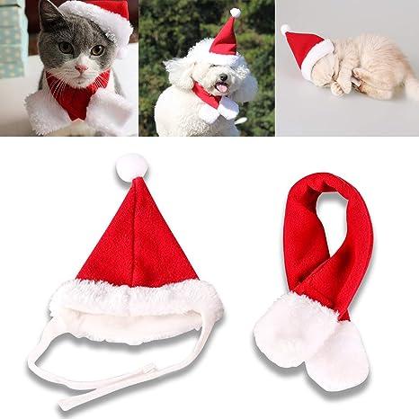 COM4SPORT - Gorro de Navidad para Mascotas, Color Rojo y Blanco ...