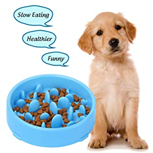 XZQTIVE Interactive Bloat Stop Slow Feeder Dog Bowl