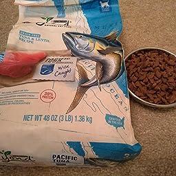 Amazon.com : Purina Beyond Grain Free, Natural Dry Cat Food ...