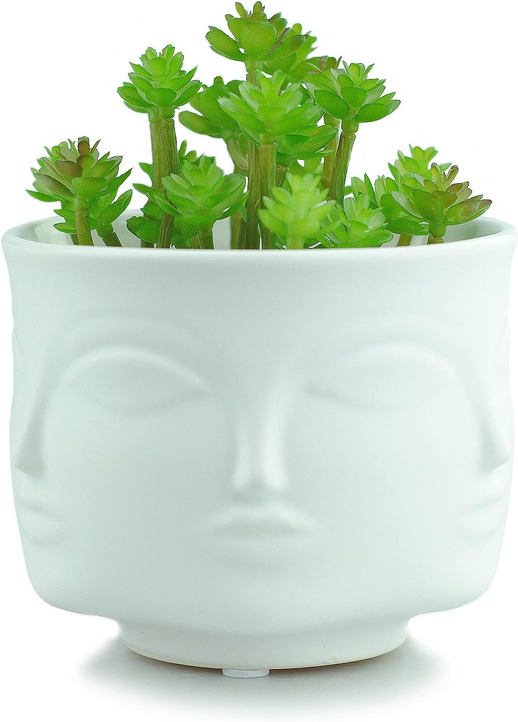 VanEnjoy Modern Decorative Nordic Style Face Statue Planter Flower Pots,Faces on 6 Sides, 4.37 Inches White