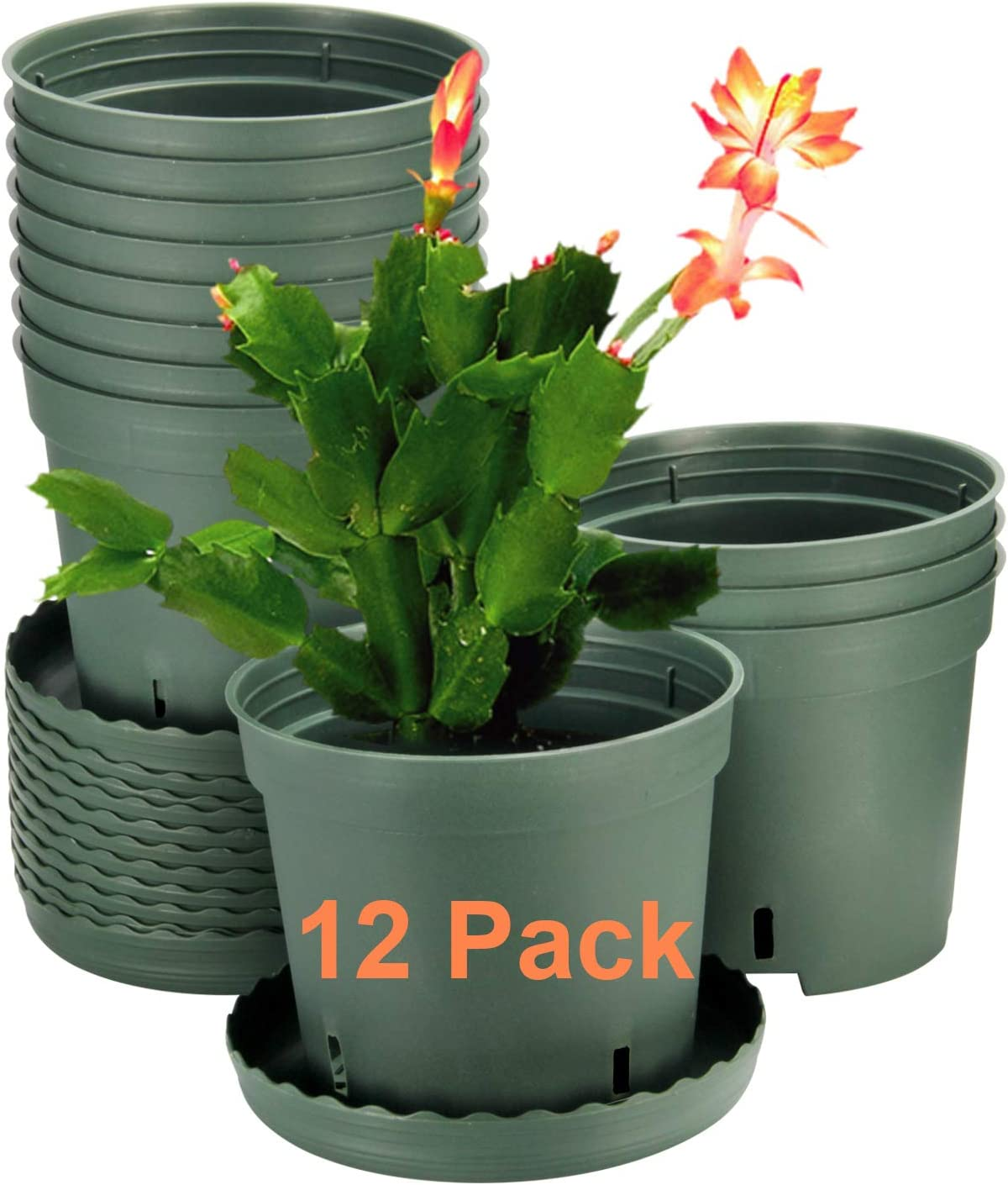 Plants not Included 12 Pack Plant Pots ZOUTOG 6 inch Plastic Pots for Plants with Drainage Hole