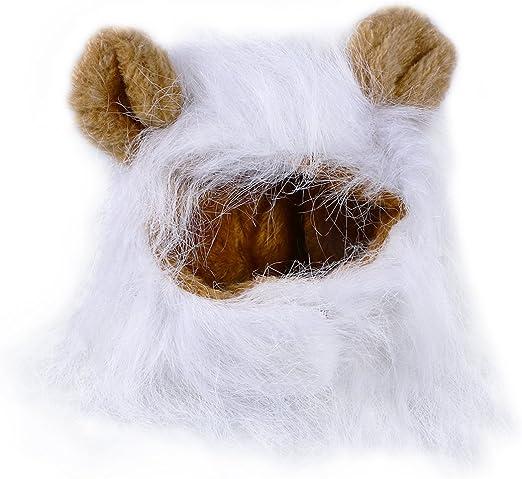 UEETEK Mascota Disfraz León Melena Peluca Leon para Gato Perro Pequeño Ajustable Blanco: Amazon.es: Productos para mascotas