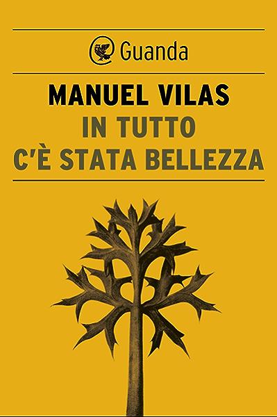 In tutto cè stata bellezza (Italian Edition) eBook: Vilas, Manuel: Amazon.es: Tienda Kindle