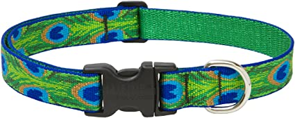 """Lupine Collars /& Leads 32653 1/"""" X 16-28/"""" Tail Feather Collar,No 32653"""