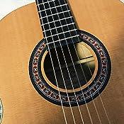 Amazon.com: La Patrie Guitarra, Etude: Musical Instruments