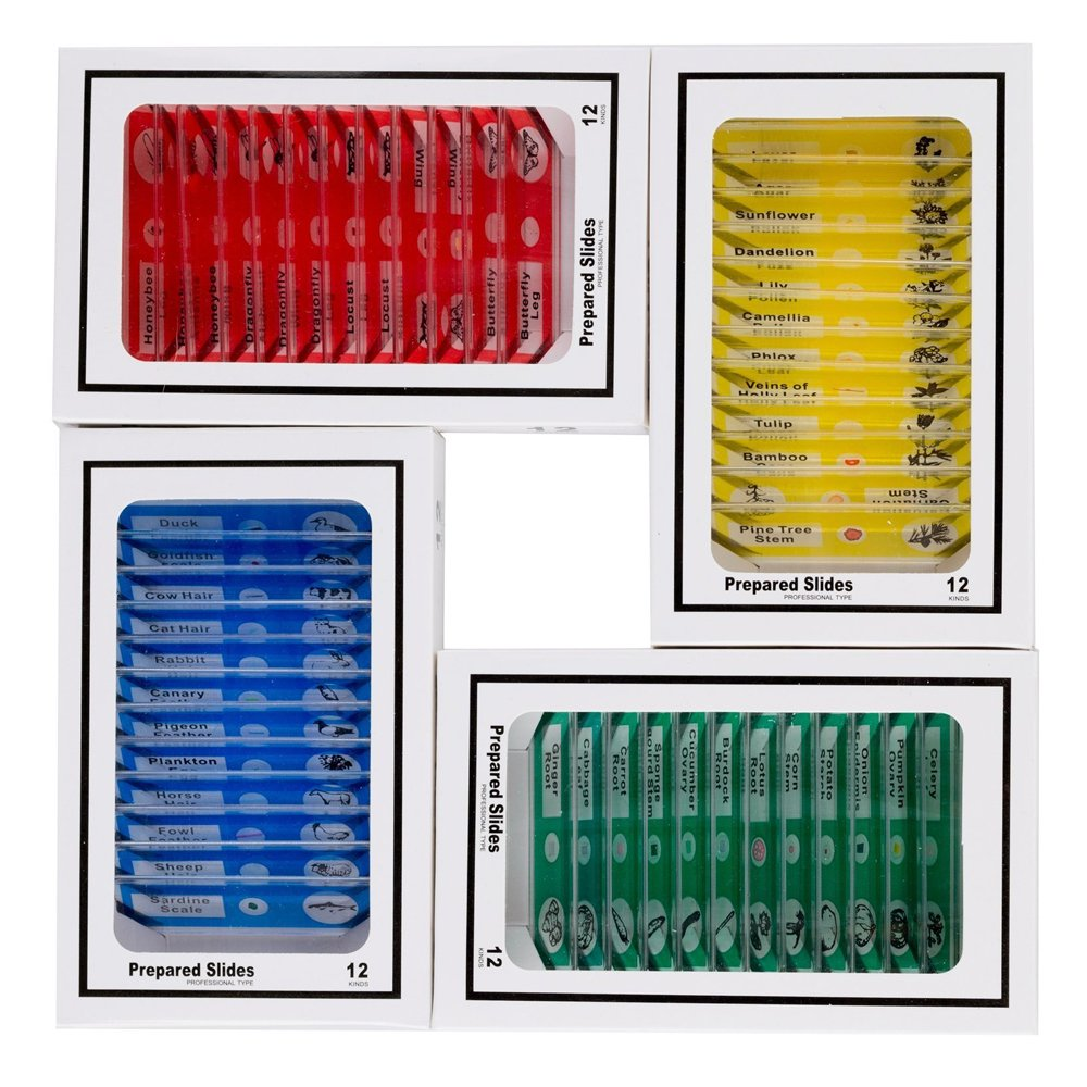 Zerich 48PCS Kids Plastic Prepared Slides for Microscope of Animals Insects Plants Flowers Sample Specimens for Basic Biological Science Education #81053
