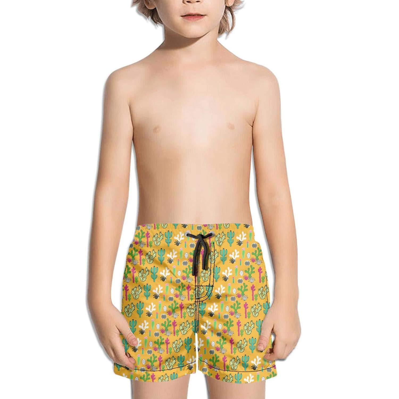 lidongsing Cactus Green Pot Plant Boys Fast Drying Beach Swim Trunks Sports Swim Board Shorts