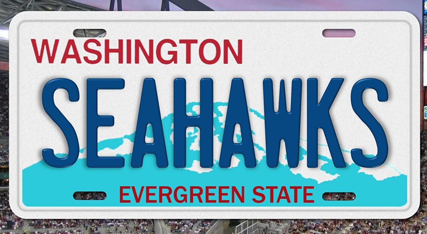 This Girl Loves Her Seahawks Novelty Metal License Plate