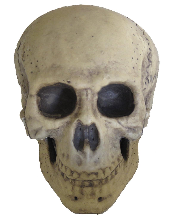 UHC ScaryリアルなLook人間スケルトンスカルヘッドホラーハロウィン装飾   B075FT4FT4