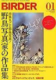 BIRDER (バーダー) 2012年 01月号 丸ごと、野鳥写真! 野鳥写真家の作品集!