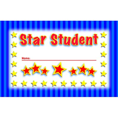 NORTH STAR TEACHER RESOURCE Student Incentive Punch Cards: Toys & Games