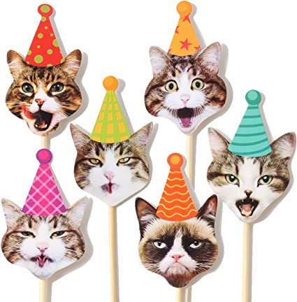 Pleasing 24Pcs Grumpy Cat Cake Cupcake Toppers Cat Birthday Party Favors Funny Birthday Cards Online Elaedamsfinfo