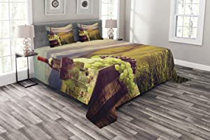 Ambesonne Wine Bedspread, Italy Tuscany Landscape Rural Vineyard Autumn Harvest Grapes Drink Viticulture, Decorative Quilted 3 Piece Coverlet Set with 2 Pillow Shams, Queen Size, Black Brown