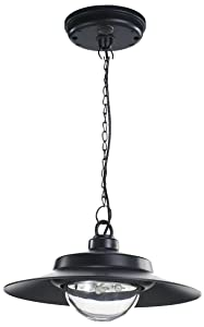 Nature Power 21030 Hanging Solar Powered LED Shed Light with Remote Control, Black Finish