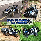 Distianert 1: 16 Scale Electric RC Car Off Road Vehicle 2.4Ghz Radio Remote Control Car 2W 20Mph High Speed Racing Monster Truck with 2 Recharger Battery-Best Gift for Kids