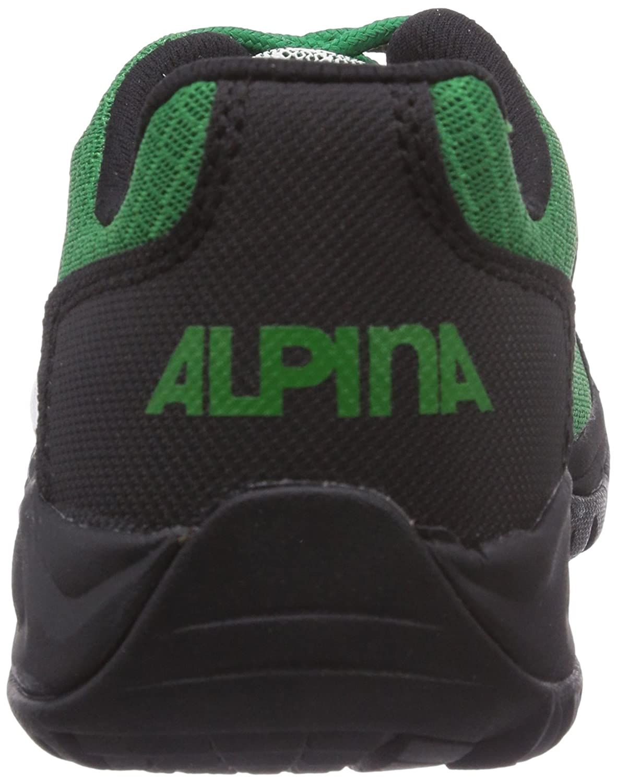 f555f89e01880e Alpina 680318