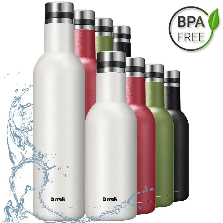 Brewsly Bottiglia Termica