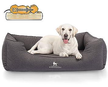 Cama para perro ortopédica Leon de Knuffelwuff, impermeable: Amazon.es: Productos para mascotas