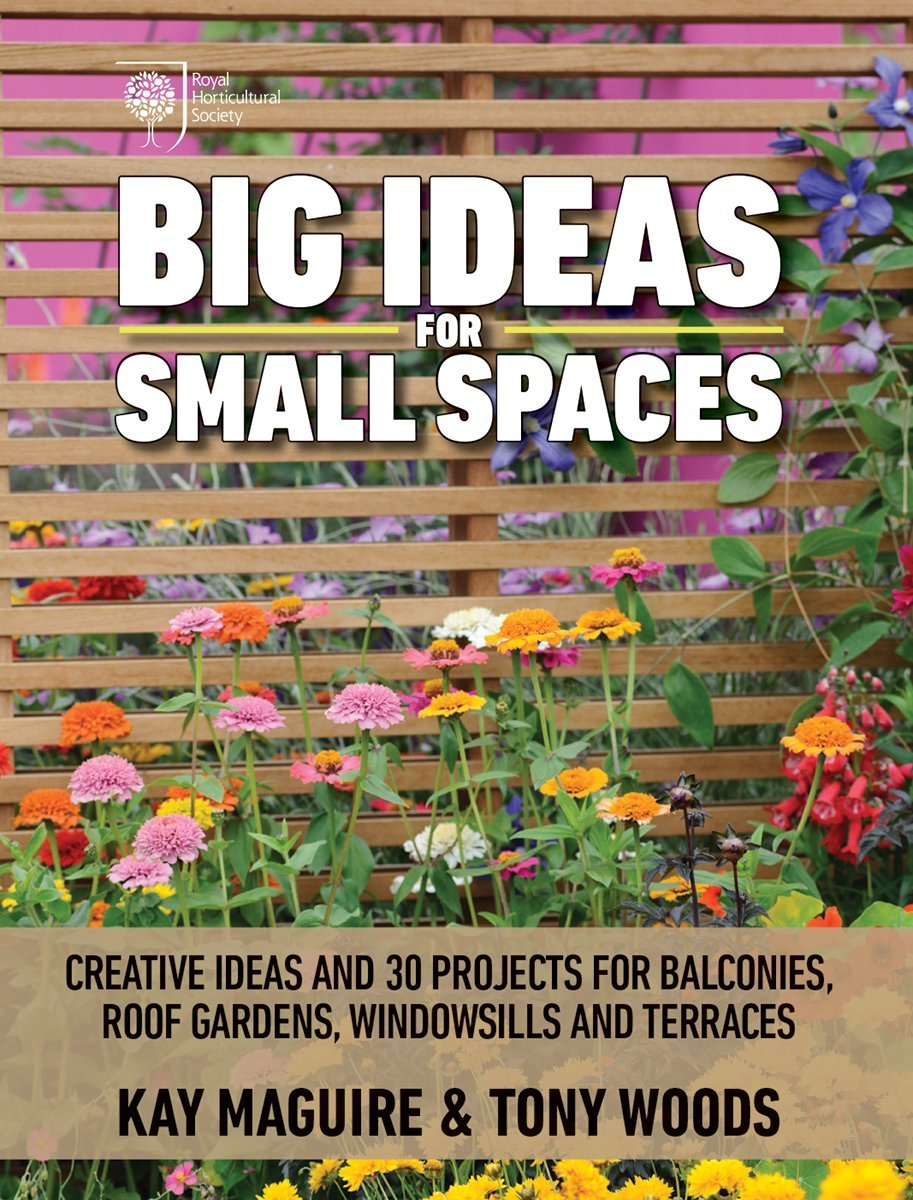 Big Ideas For Small Spaces Creative Ideas And 30 Projects For Balconies Roof Gardens Windowsills And Terraces Maguire Kay Woods Tony 9781770858695 Amazon Com Books