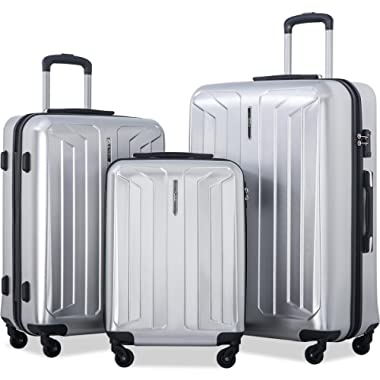 Flieks 3 Piece Luggage Set Spinner Suitcase - TSA Approved - High/Low Temperature Resistance - 20/24/28in (Silver)