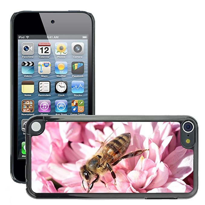 cover pour ipod touch 5