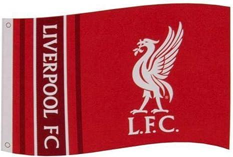 Liverpool F.C. Bandera WM Merchandising Oficial: Amazon.es: Deportes y aire libre