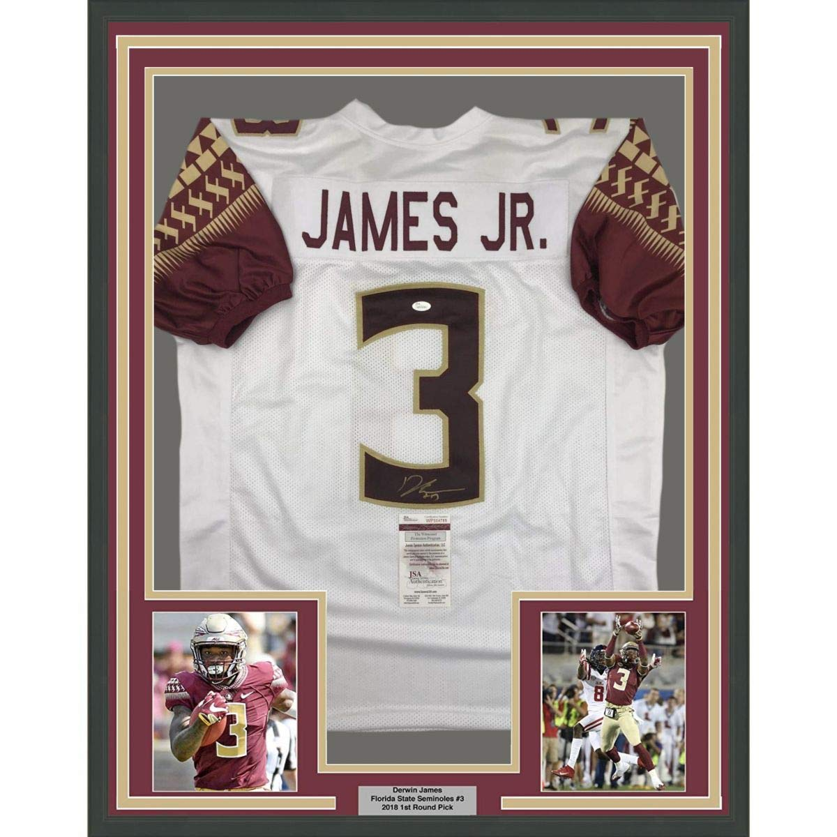 size 40 2770d d6642 Framed Autographed/Signed Derwin James 33x42 Florida State ...