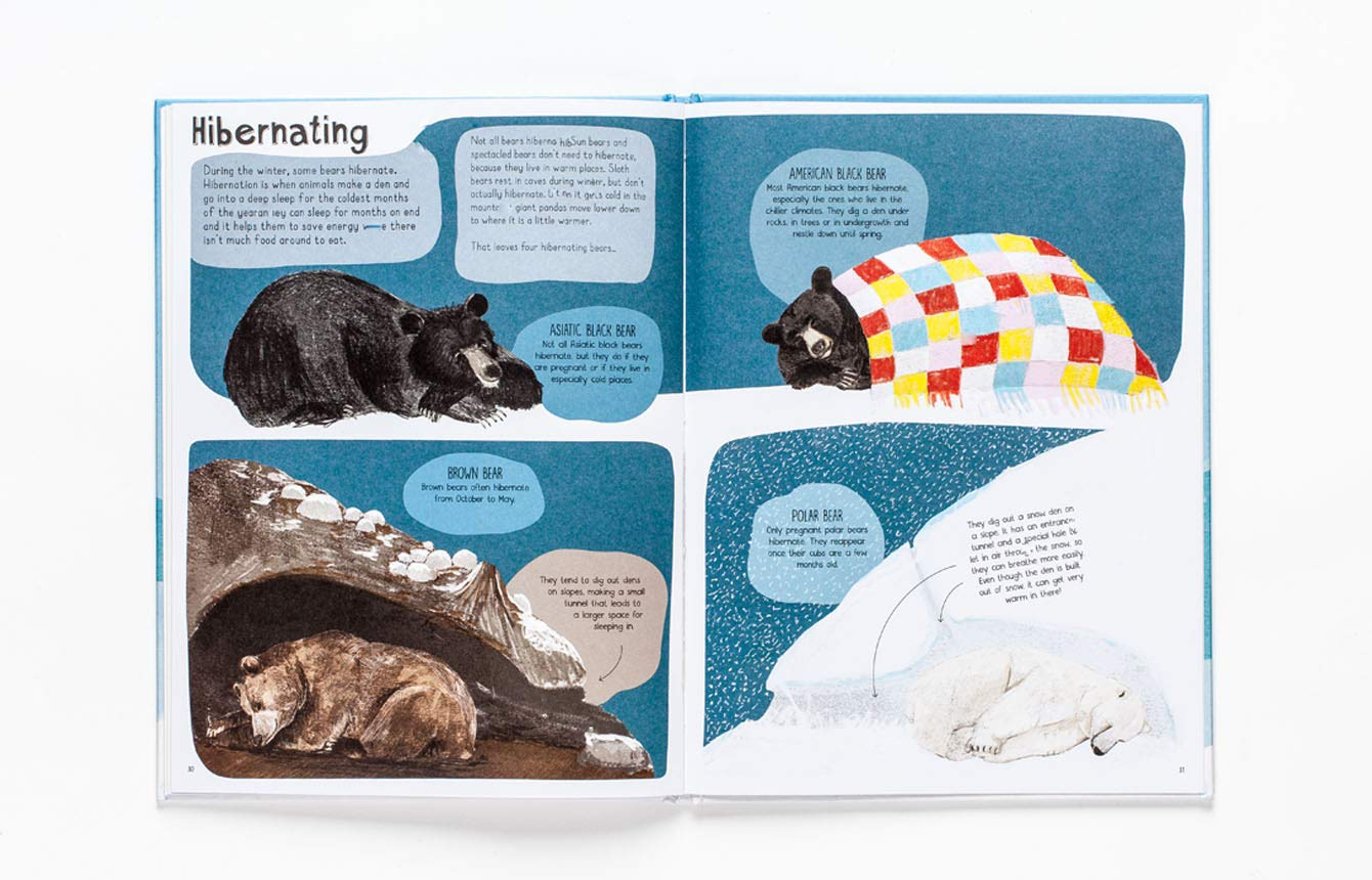 A Book of Bears: At Home with Bears Around the World: Amazon.co.uk: Katie  Viggers: Books