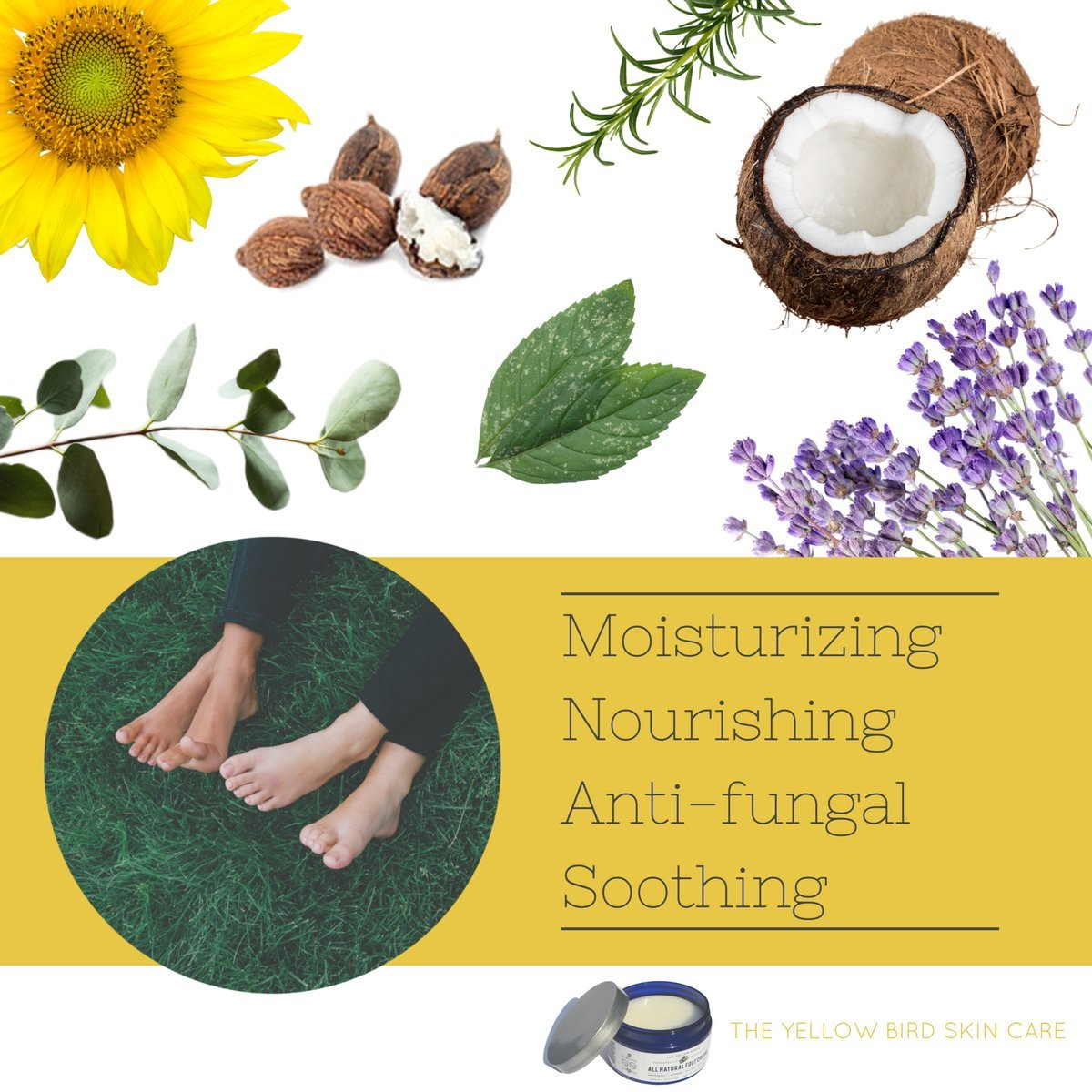 All Natural Antifungal Foot Cream. Moisturizing Organic Relief for Dry Cracked Heels, Callused Feet, Athletes Foot. Best Therapeutic Grade Essential Oils: Peppermint, Lavender, Eucalyptus, Tea Tree. by The Yellow Bird (Image #3)