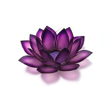 Om Gallery Capiz Shell Lotus Tea Light Holder, Passion