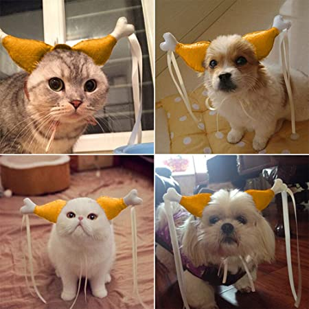 Amazon.com : Halloween Pet Cosplay Costume Pet Chicken Cats and Dogs Headdress Chicken Hair Band Wedding Party Funny Props (S)(L) : Beauty