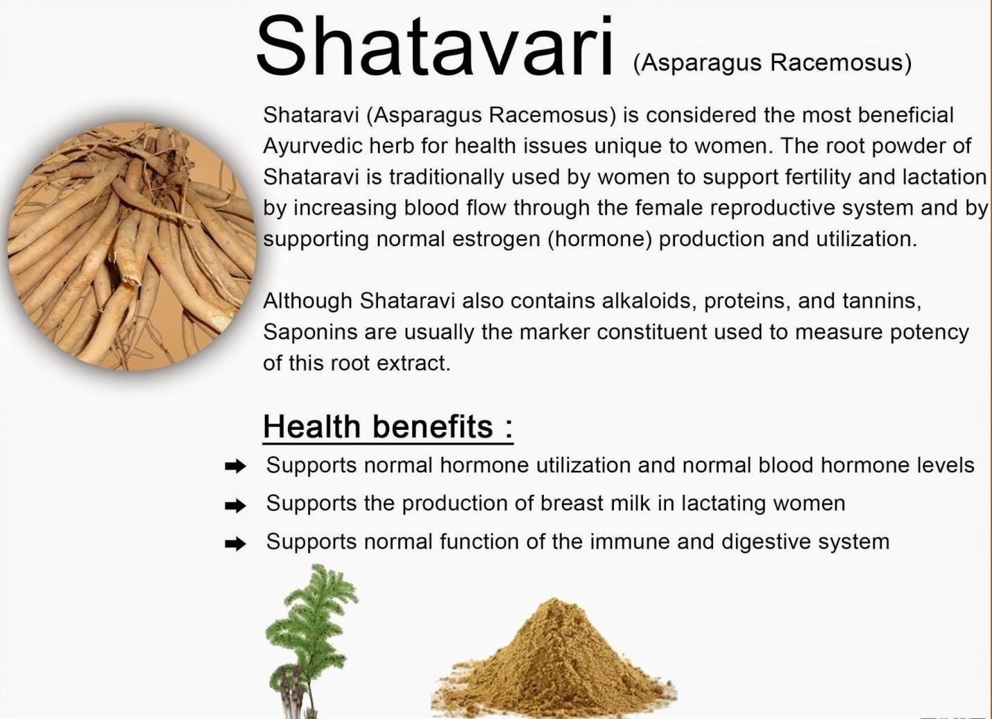 Shatawari (Shatavari) Ghee (Herbal ghee) ~ Asparagus racemosa ~Premium potency herb in a natural, fresh ghee base ~ Made in the USA every week