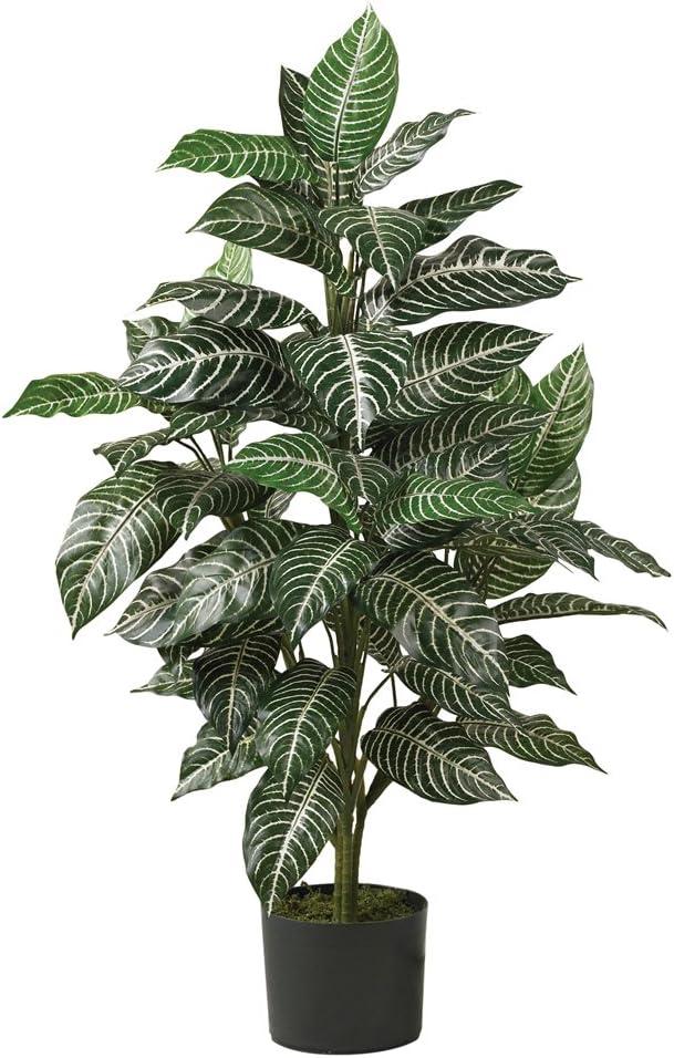 Nearly Natural 6542 Zebra Silk Plant, 3-Feet, Green