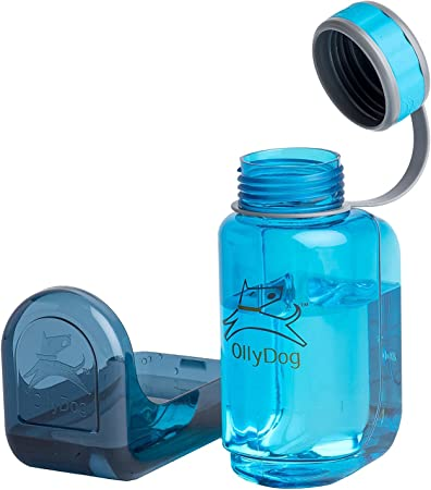 NEW OllyDog Flame OllyBottle Water Bottle 600ml FREE SHIPPING
