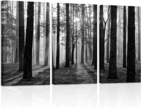 Amazon Com Visual Art Decor Black And White Nature Forest Landscape Picture Art Prints On Canvas Framed And Stretched Canvas Art Home Decor Living Room Wall Art Foggy Forest Large Posters Prints