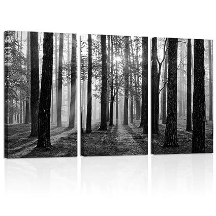 Amazon Com Visual Art Decor Black And White Nature Forest Landscape
