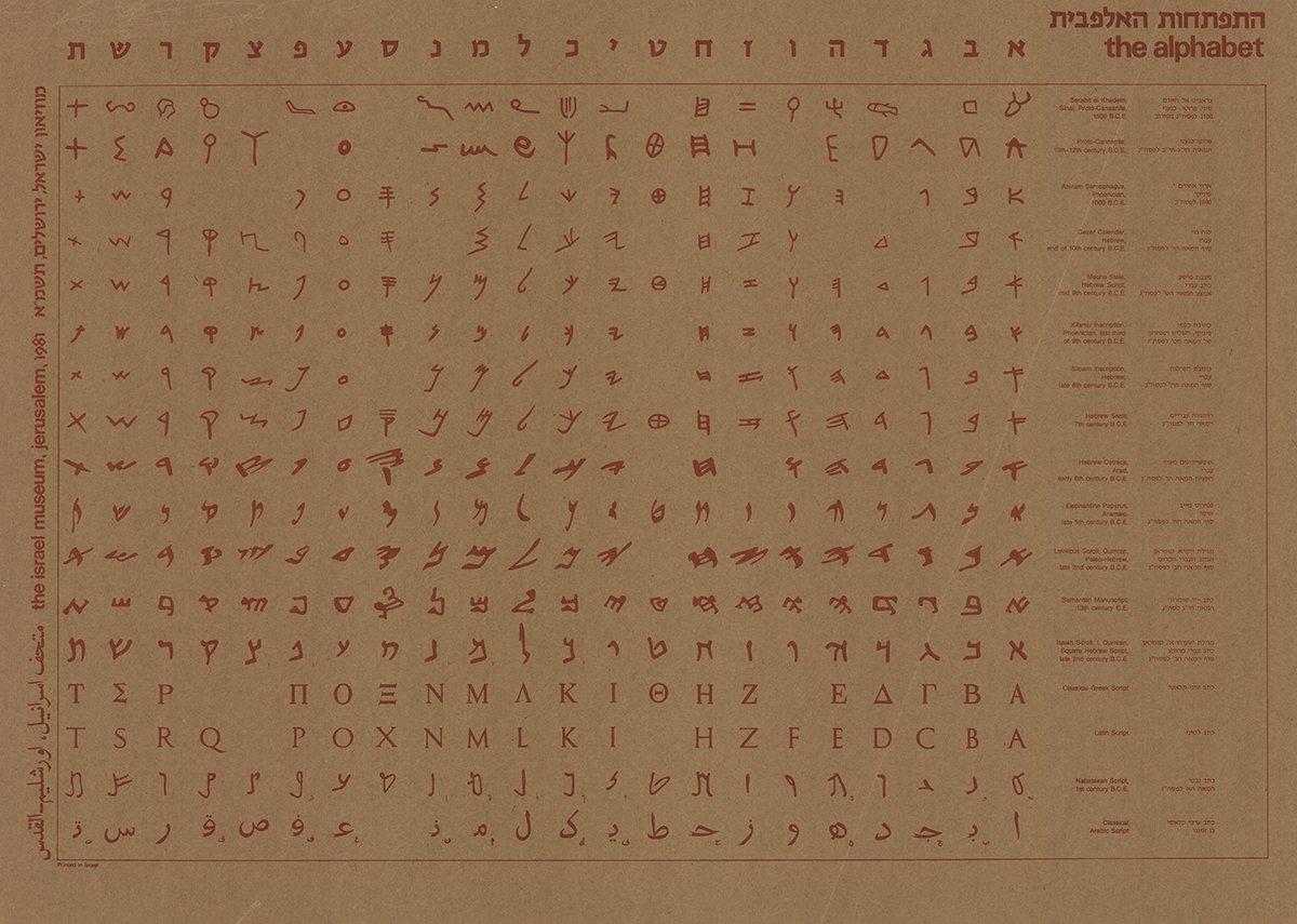 El cartel del alfabeto (marrón): Amazon.es: Hogar