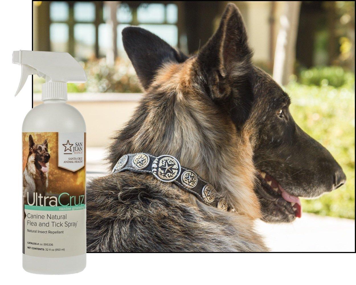 UltraCruz Canine Natural Flea and Tick Spray for Horses, 32 oz. by UltraCruz (Image #2)