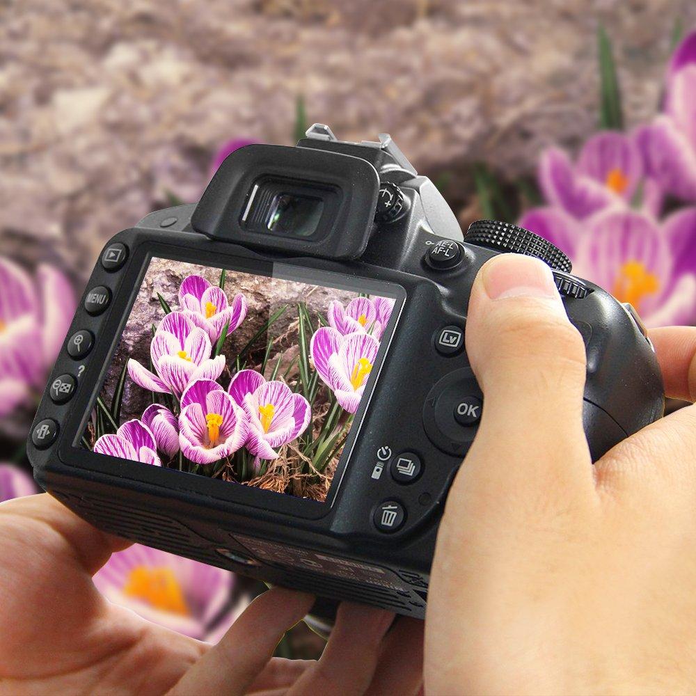 AFUNTA Protector de Pantalla para Nikon D3100 D3200 D3300 D3400 2 Paquete la C/ámara del Protector de Vidrio Templado /Óptica