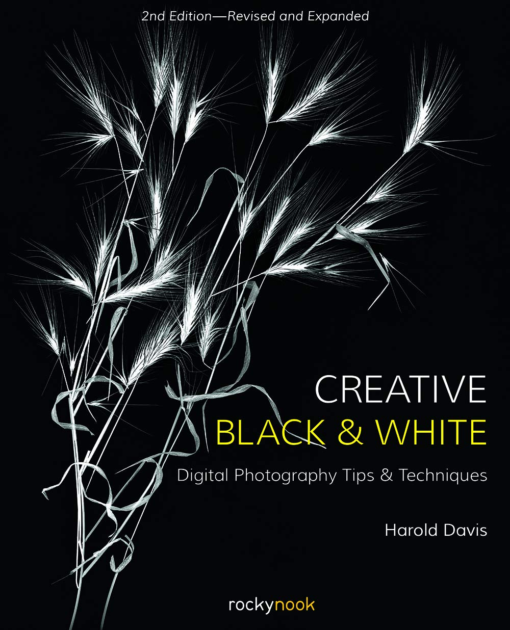 Creative black and white digital photography tips and techniques harold davis 9781681984964 photography amazon canada
