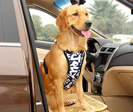 Amazon.com : Large Dogs Safety Vest Harness with Car Seat Belt Big ...