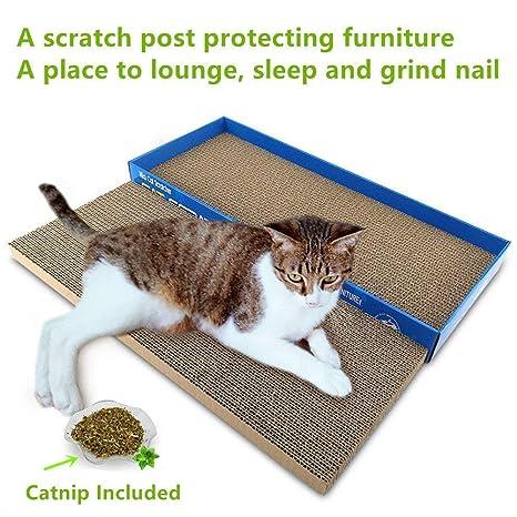 Zantec tiragraffi de cartón + Catnip Come Cuna y tapettino de arenero para Gatos, 2