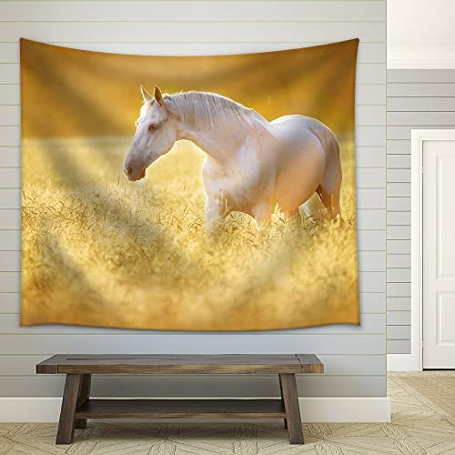 wall26 – White Orlov Trotter Horse in Rye, Golden Sunset – Fabric Wall Tapestry Home Decor – 68×80 inches