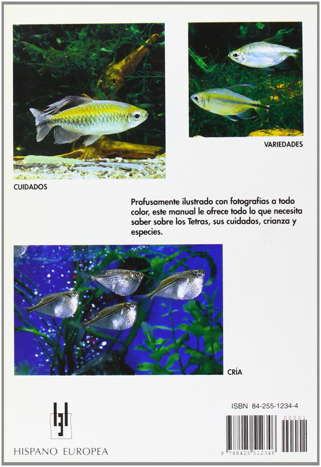 Tetras (Manuales Del Acuario.) (Spanish Edition): Spencer Glass: 9788425512346: Amazon.com: Books