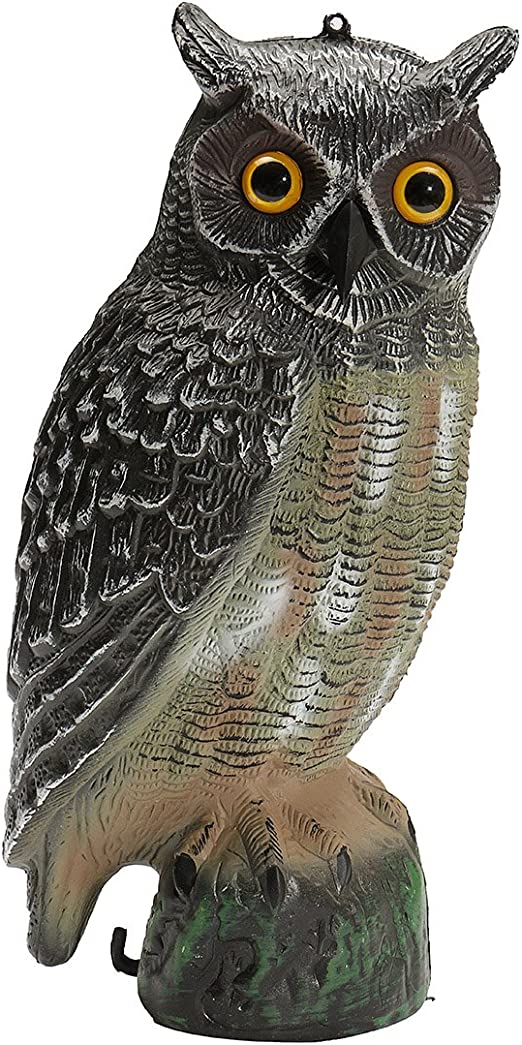 dDanke Repelente de pájaros de búho falso, 40 x 19 x 18 cm, para jardín: Amazon.es: Jardín