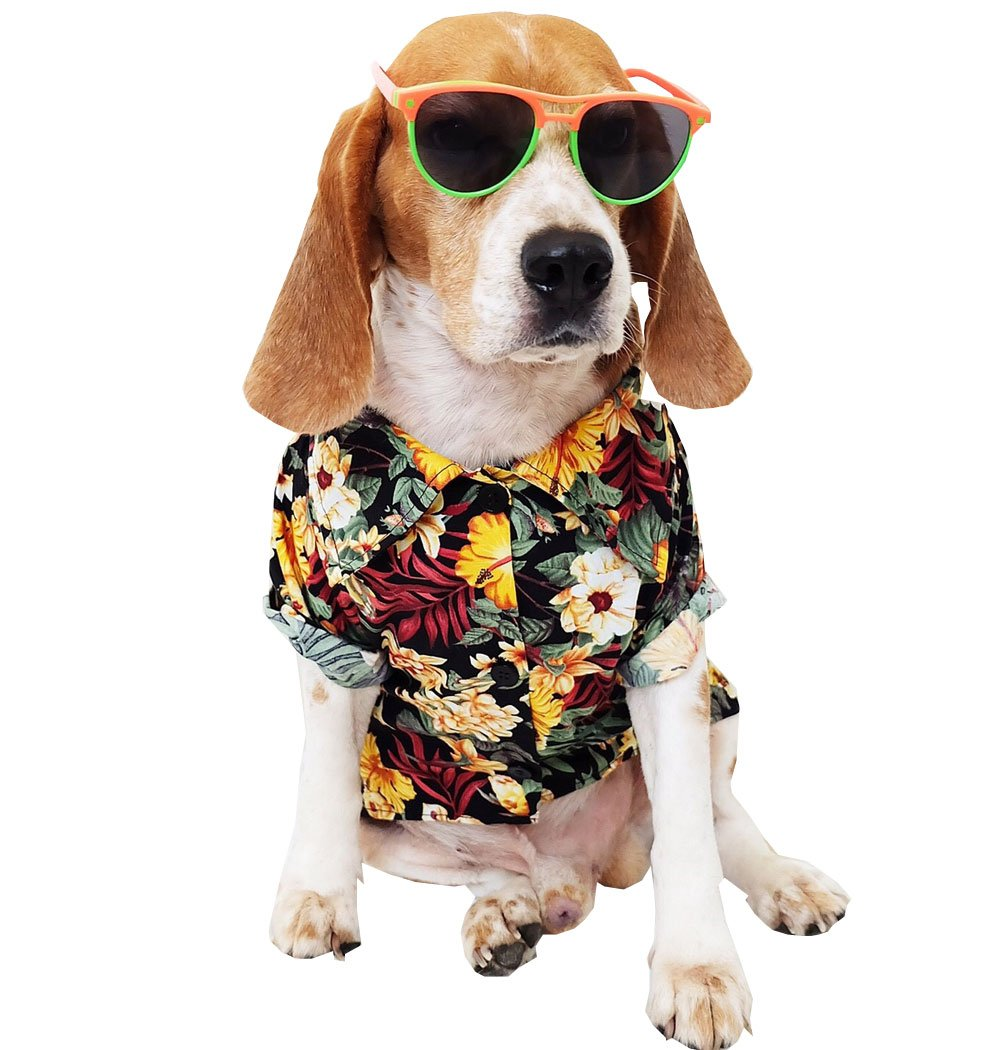 Dog Shirts Summer Camp, Dog Shirts, Dog Clothes, Small, Medium, Large, colorful Pet Shirts, Shirt Pet Clothing, Puppy Clothes, Summer Dog Apparel, Hawaiian Styles, colorful Flowers Hawaiian Shirts