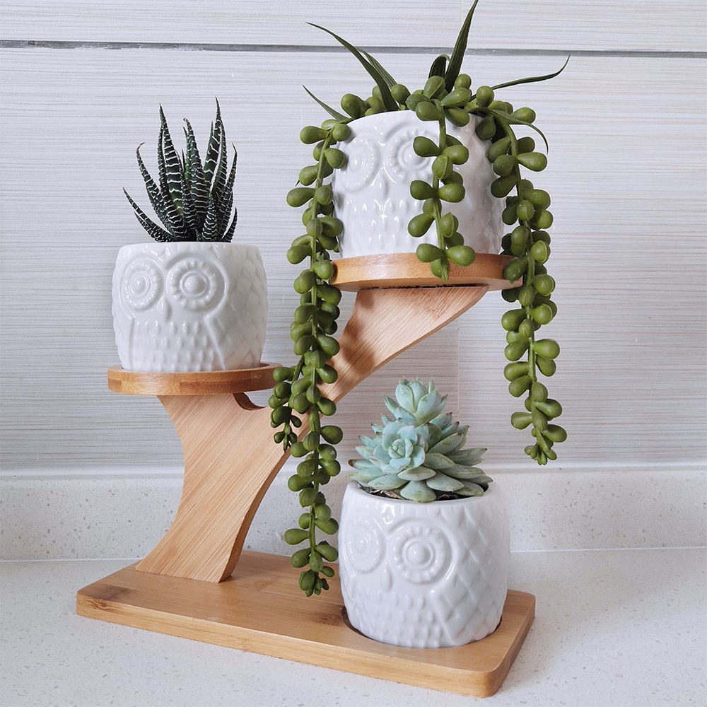 3pcs Owl Succulent Pots with 3 Tier Bamboo Saucers Stand Holder - White Modern Decorative Ceramic Flower Planter Plant Pot with Drainage - Home Office Desk Garden Mini Cactus Pot Indoor Decoration by besttoyhome (Image #7)