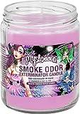 Smoke Odor Exterminator 13oz Jar